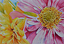 Flowers for My Studio by Mary Kay Wilson