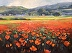 Tuscan Poppies by Jeannie Millecam