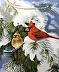 Cardinals in Winter by Thomas Connolly