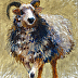 Sheepish #2 by Carolyn Letvin