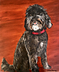 Shelby the Portuguese Water Dog by Gerry Lynne Tatum