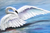 Trumpeter Swan Welcome 2021 by Jane Shank
